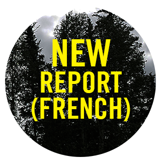 New Report (French) button